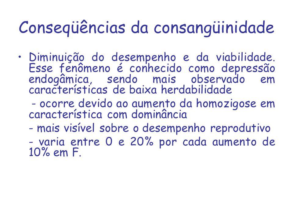 Conseqüências da consangüinidade Diminuição do desempenho e da viabilidade. Esse fenômeno é conhecido como depressão endogâmica, sendo mais observado