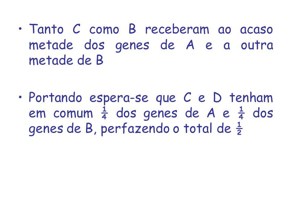 Tanto C como B receberam ao acaso metade dos genes de A e a outra metade de B Portando espera-se que C e D tenham em comum ¼ dos genes de A e ¼ dos ge