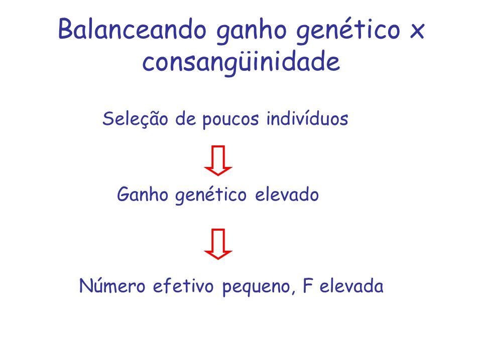 Balanceando ganho genético x consangüinidade Seleção de poucos indivíduos Ganho genético elevado Número efetivo pequeno, F elevada