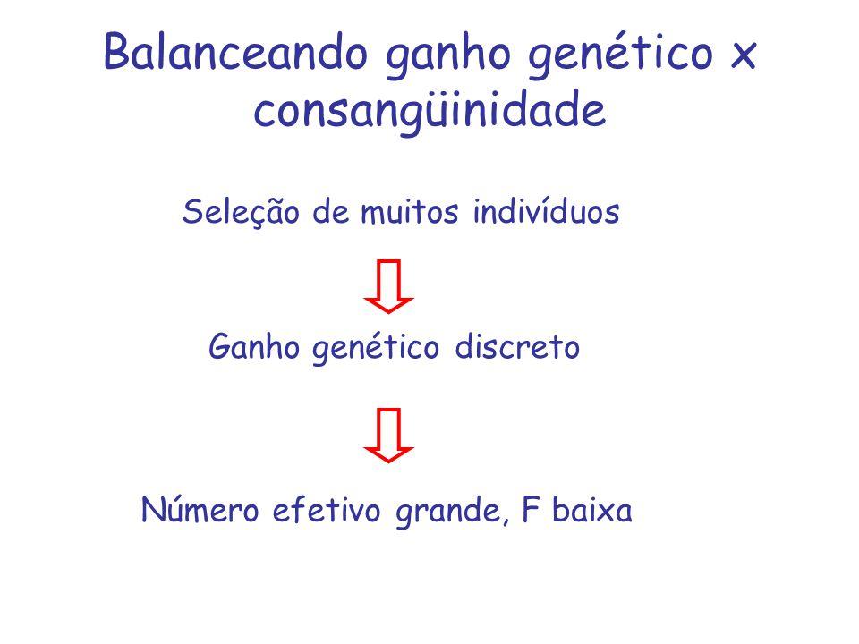 Balanceando ganho genético x consangüinidade Seleção de muitos indivíduos Ganho genético discreto Número efetivo grande, F baixa