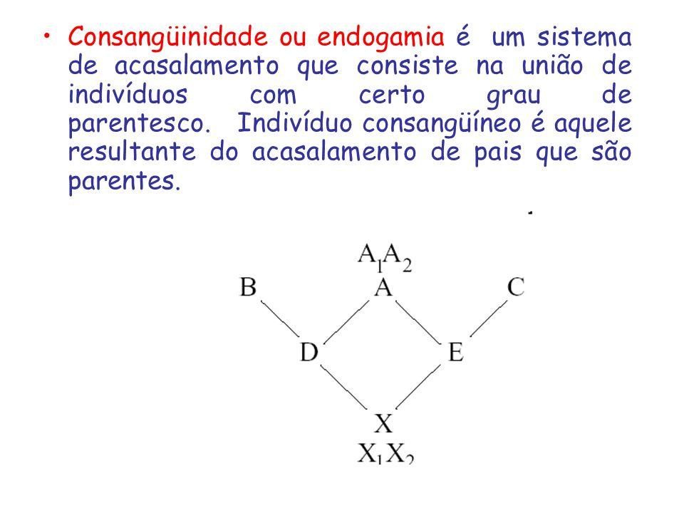 Consangüinidade ou endogamia é um sistema de acasalamento que consiste na união de indivíduos com certo grau de parentesco. Indivíduo consangüíneo é a
