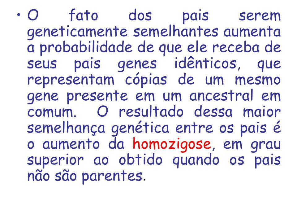Tipos 1.Classificação quanto ao parentesco entre os indivíduos que se acasalam: a) Estreita - quando o grau de parentesco dos pais é igual ou superior a 50% b) Larga - quando o grau de parentesco dos pais é menor que 50%