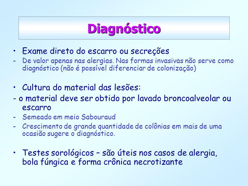 Diagnóstico Exame direto do escarro ou secreções -De valor apenas nas alergias. Nas formas invasivas não serve como diagnóstico (não é possível difere