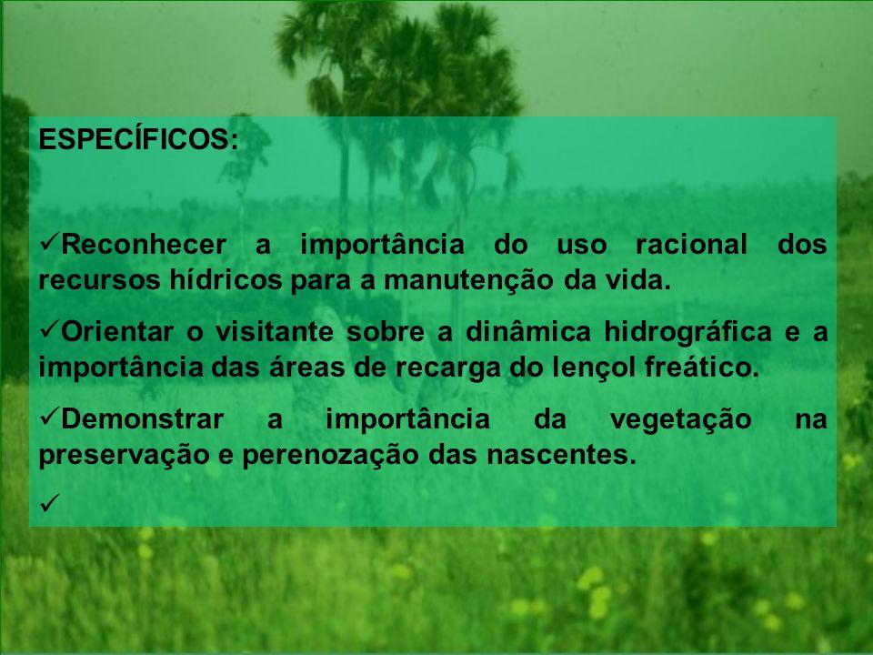 ESPECÍFICOS: Reconhecer a importância do uso racional dos recursos hídricos para a manutenção da vida.