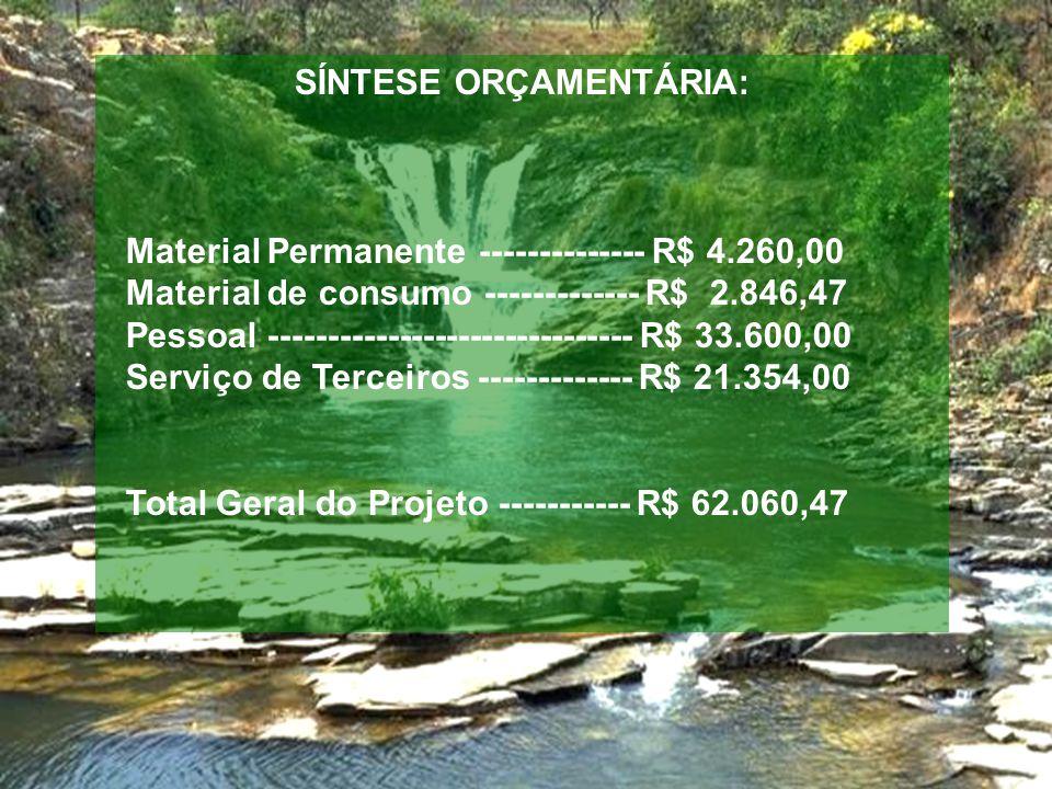 SÍNTESE ORÇAMENTÁRIA: Material Permanente -------------- R$ 4.260,00 Material de consumo ------------- R$ 2.846,47 Pessoal ------------------------------- R$ 33.600,00 Serviço de Terceiros ------------- R$ 21.354,00 Total Geral do Projeto ----------- R$ 62.060,47
