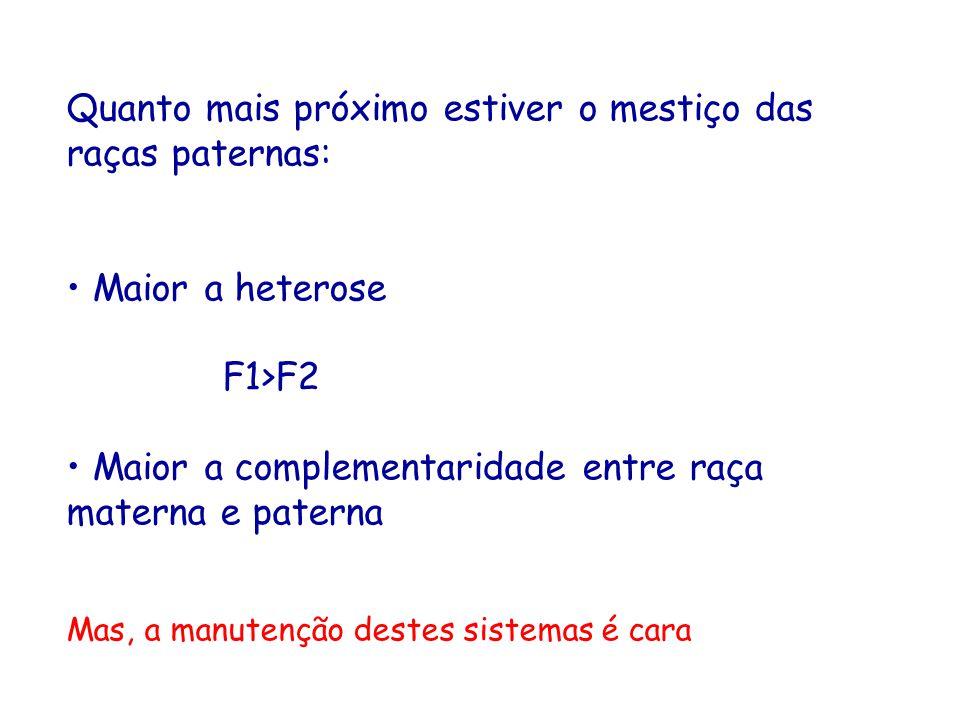 Quanto mais próximo estiver o mestiço das raças paternas: Maior a heterose F1>F2 Maior a complementaridade entre raça materna e paterna Mas, a manuten