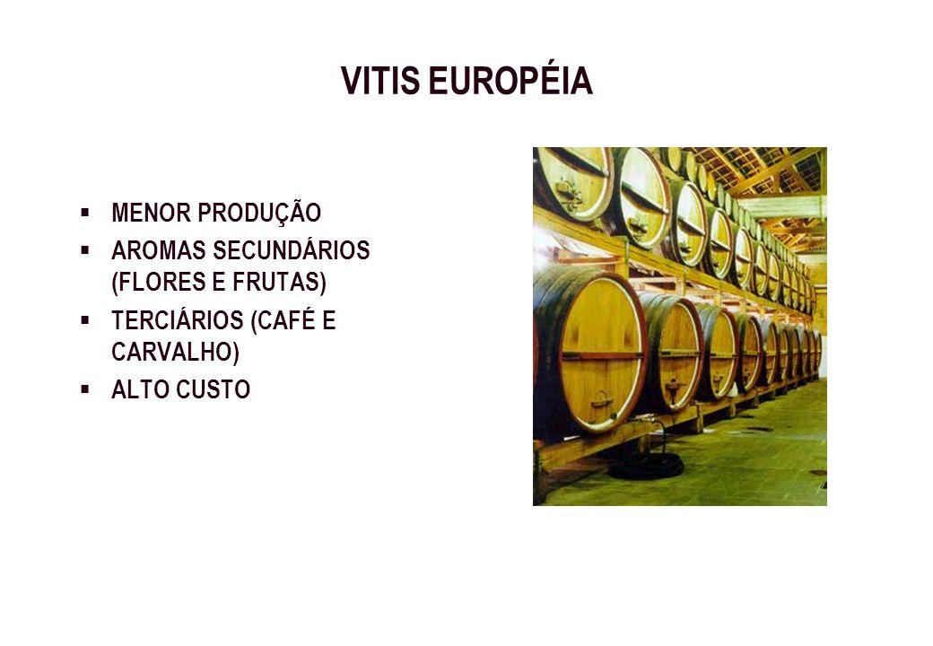 VITIS EUROPÉIA MENOR PRODUÇÃO AROMAS SECUNDÁRIOS (FLORES E FRUTAS) TERCIÁRIOS (CAFÉ E CARVALHO) ALTO CUSTO