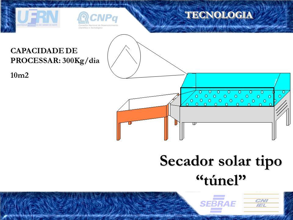 TECNOLOGIATECNOLOGIA CAPACIDADE DE PROCESSAR: 300Kg/dia 10m2 Secador solar tipo túnel