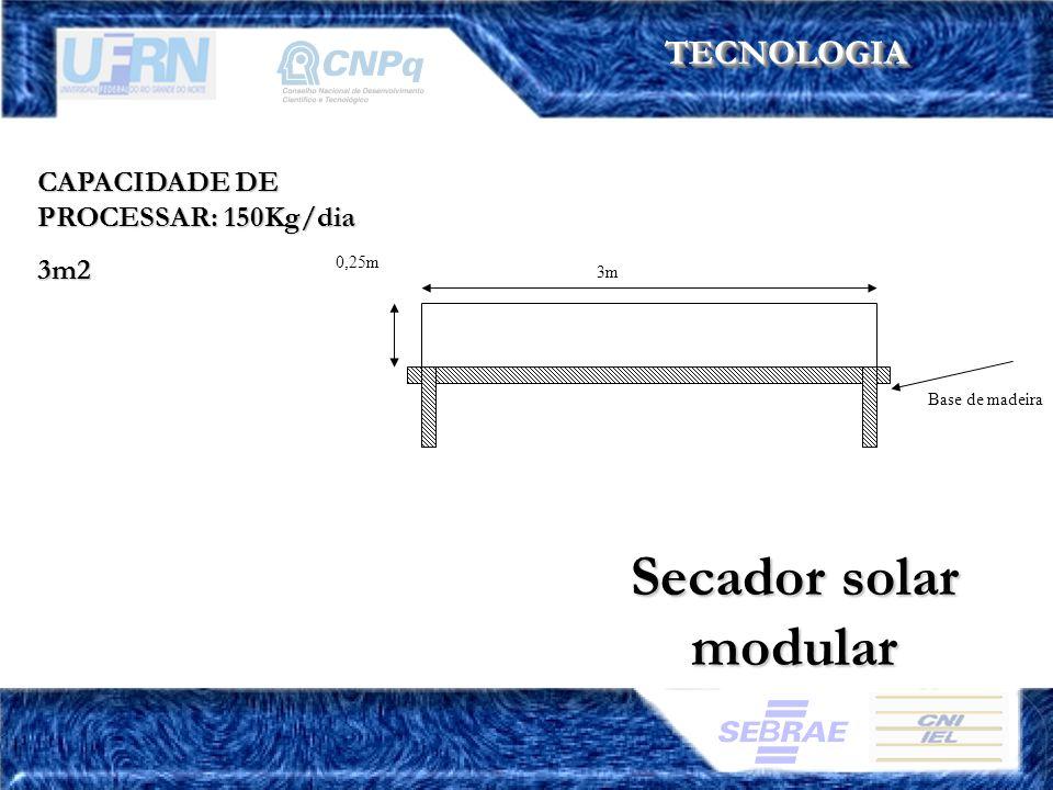 TECNOLOGIATECNOLOGIA CAPACIDADE DE PROCESSAR: 150Kg/dia 3m2 Secador solar modular Base de madeira 3m 0,25m