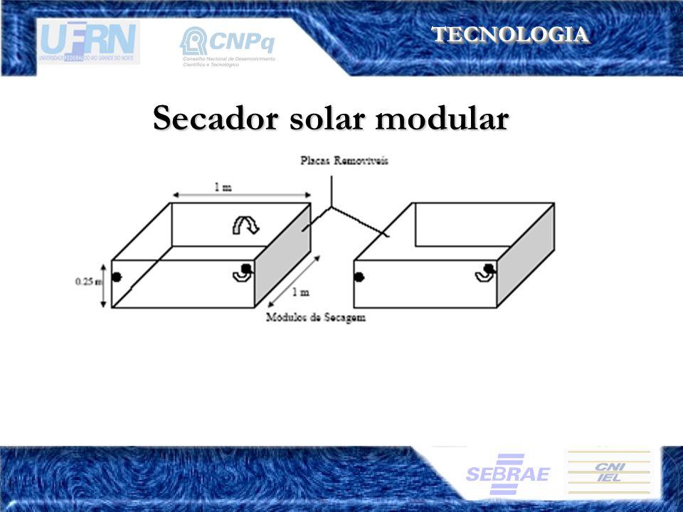 TECNOLOGIATECNOLOGIA Secador solar modular