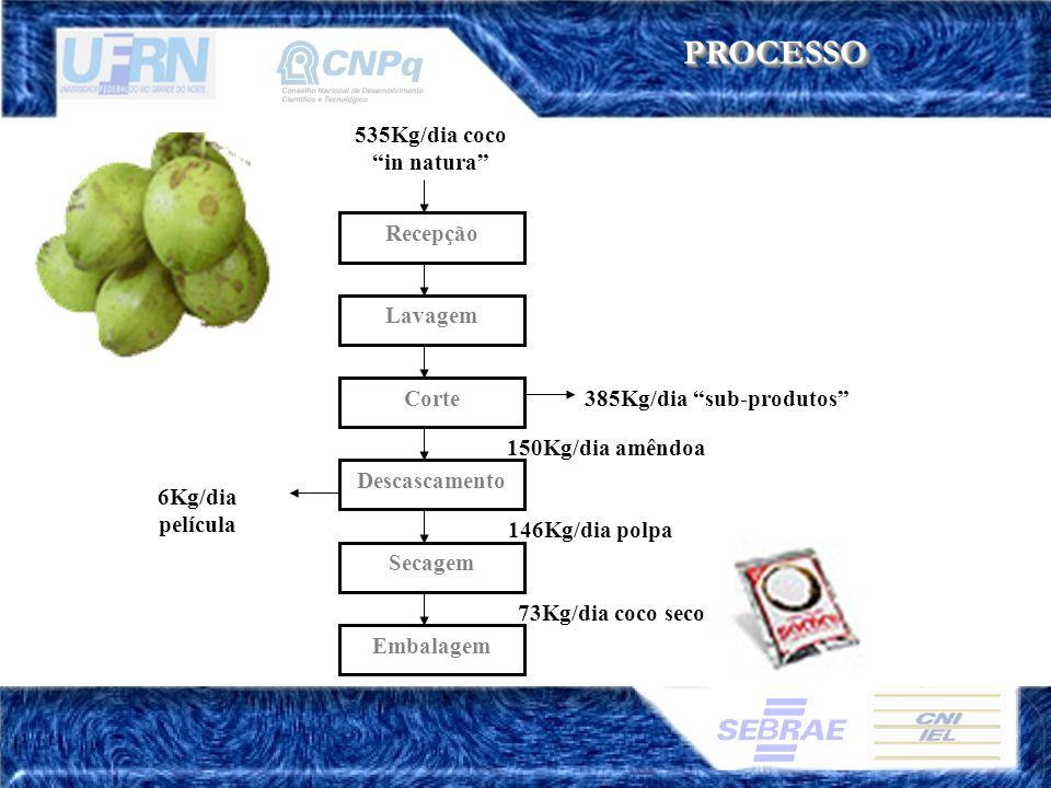 PROCESSOPROCESSO Recepção Lavagem Corte Secagem 385Kg/dia sub-produtos 535Kg/dia coco in natura Descascamento 150Kg/dia amêndoa 73Kg/dia coco seco Emb