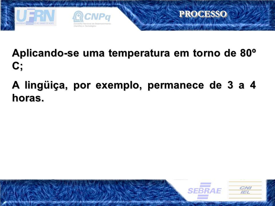 Aplicando-se uma temperatura em torno de 80º C; A lingüiça, por exemplo, permanece de 3 a 4 horas. PROCESSOPROCESSO
