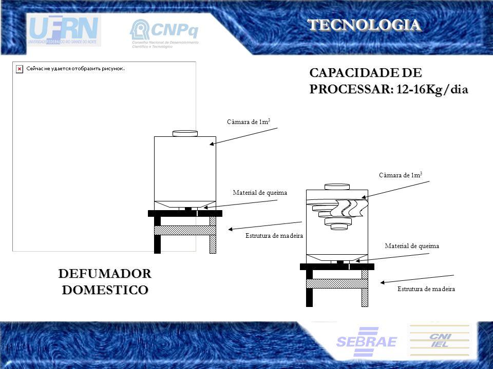 TECNOLOGIATECNOLOGIA CAPACIDADE DE PROCESSAR: 12-16Kg/dia Estrutura de madeira Material de queima Câmara de 1m 3 Estrutura de madeira Material de quei
