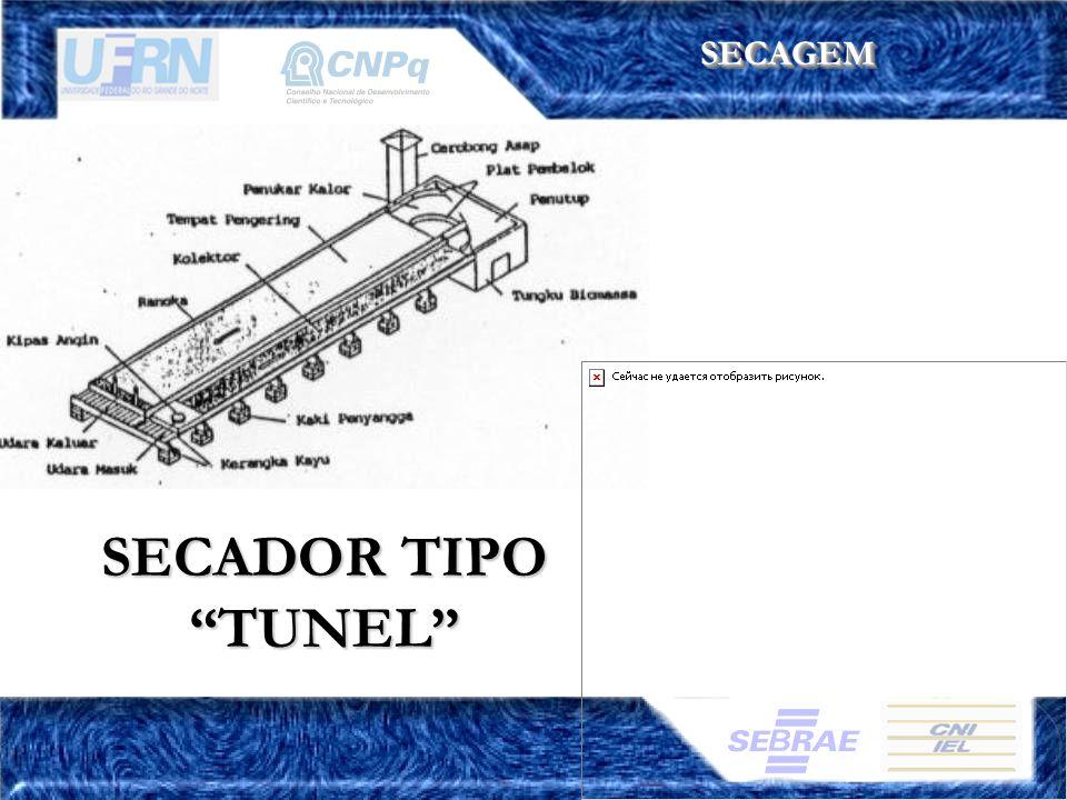 SECAGEMSECAGEM SECADOR TIPO TUNEL