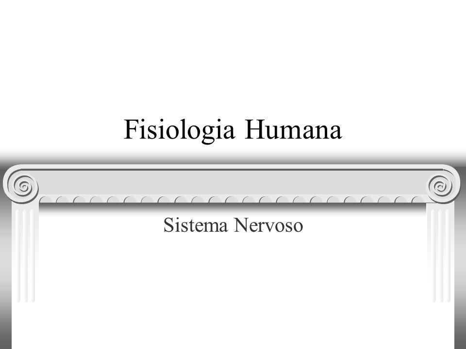 Fisiologia Humana Sistema Nervoso