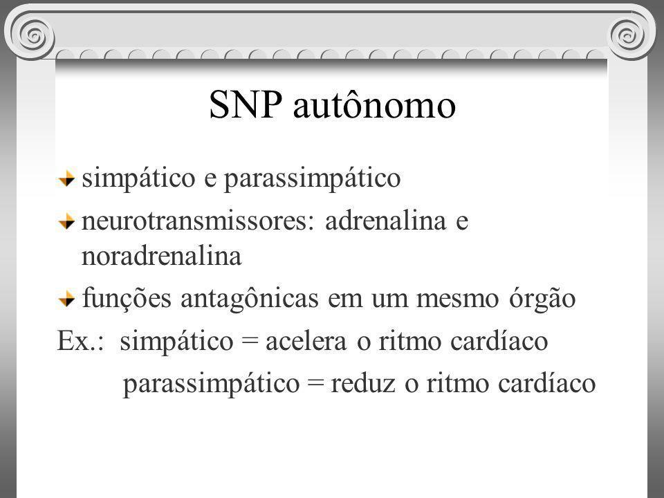 SNP autônomo simpático e parassimpático neurotransmissores: adrenalina e noradrenalina funções antagônicas em um mesmo órgão Ex.: simpático = acelera