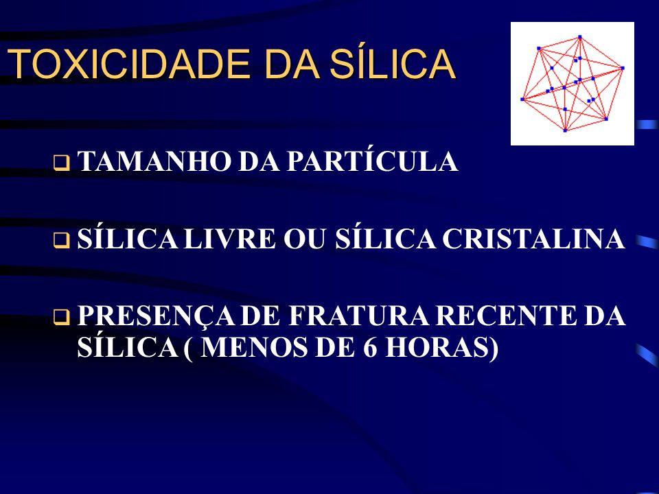 TOXICIDADE DA SÍLICA TAMANHO DA PARTÍCULA SÍLICA LIVRE OU SÍLICA CRISTALINA PRESENÇA DE FRATURA RECENTE DA SÍLICA ( MENOS DE 6 HORAS)