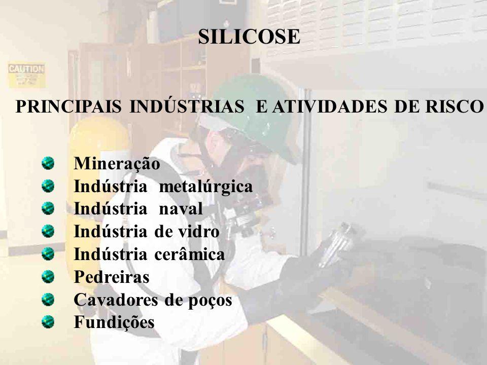 Mineração Indústria metalúrgica Indústria naval Indústria de vidro Indústria cerâmica Pedreiras Cavadores de poços Fundições SILICOSE PRINCIPAIS INDÚS