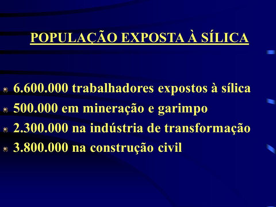 6.600.000 trabalhadores expostos à sílica 500.000 em mineração e garimpo 2.300.000 na indústria de transformação 3.800.000 na construção civil POPULAÇ