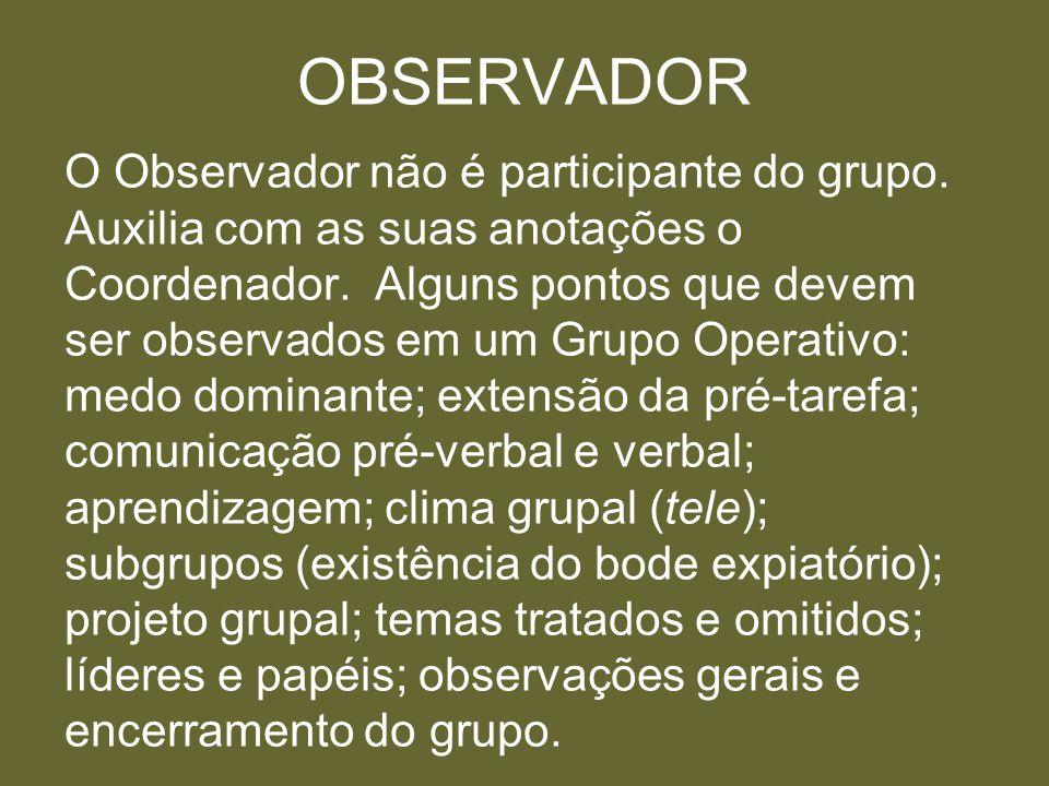 OBSERVADOR O Observador não é participante do grupo. Auxilia com as suas anotações o Coordenador. Alguns pontos que devem ser observados em um Grupo O