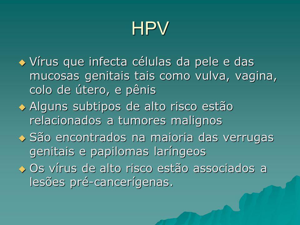 HPV Vírus que infecta células da pele e das mucosas genitais tais como vulva, vagina, colo de útero, e pênis Vírus que infecta células da pele e das m