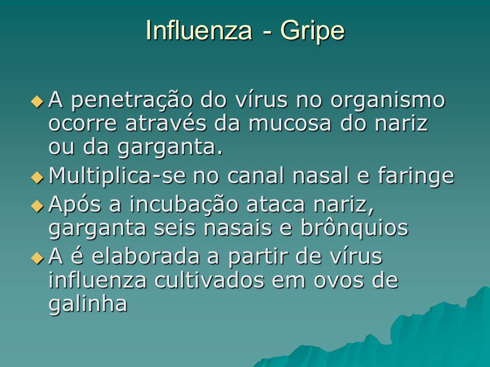 Influenza - Gripe A penetração do vírus no organismo ocorre através da mucosa do nariz ou da garganta. A penetração do vírus no organismo ocorre atrav