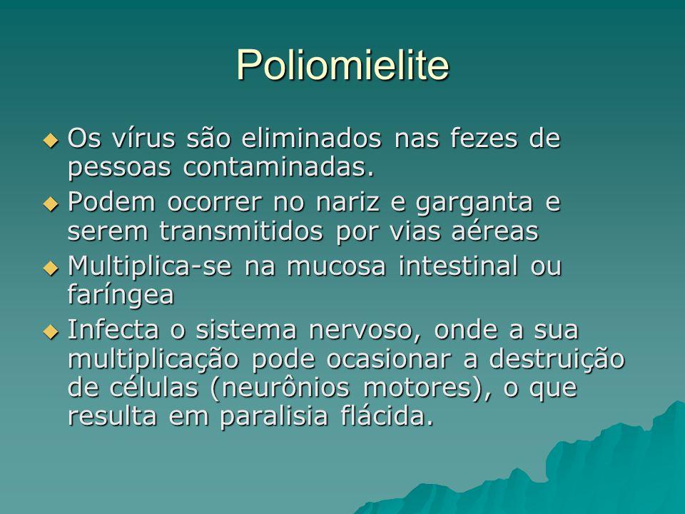 Poliomielite Os vírus são eliminados nas fezes de pessoas contaminadas. Os vírus são eliminados nas fezes de pessoas contaminadas. Podem ocorrer no na