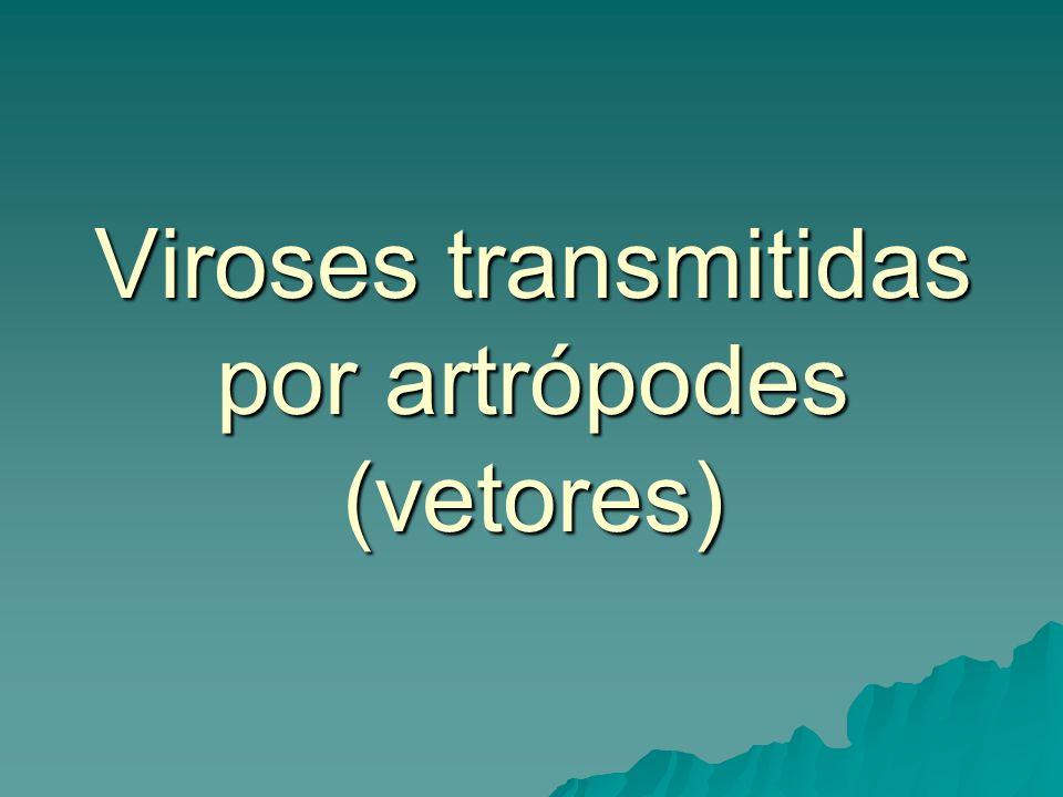 Viroses transmitidas por artrópodes (vetores)