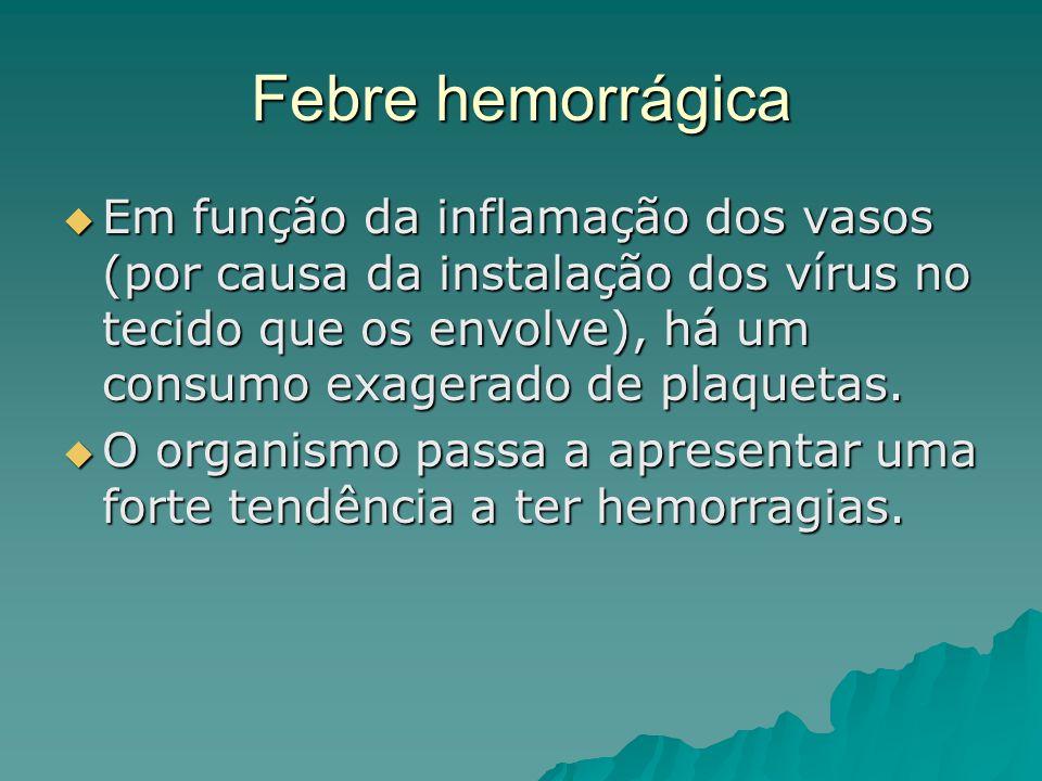 Febre hemorrágica Em função da inflamação dos vasos (por causa da instalação dos vírus no tecido que os envolve), há um consumo exagerado de plaquetas