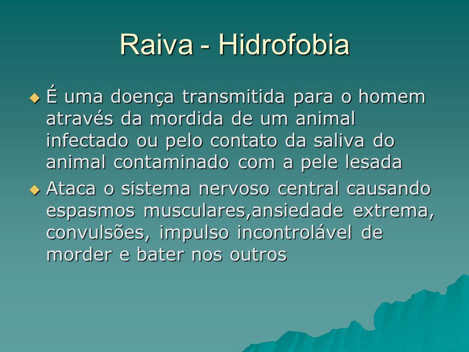 Raiva - Hidrofobia É uma doença transmitida para o homem através da mordida de um animal infectado ou pelo contato da saliva do animal contaminado com
