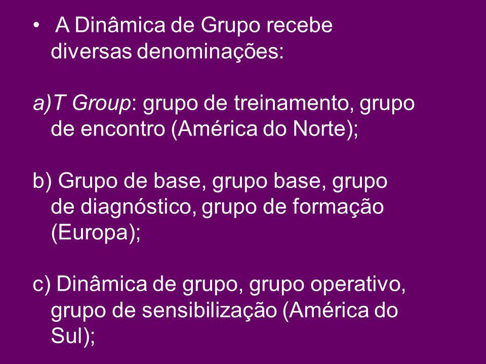 A Dinâmica de Grupo recebe diversas denominações: a)T Group: grupo de treinamento, grupo de encontro (América do Norte); b) Grupo de base, grupo base, grupo de diagnóstico, grupo de formação (Europa); c) Dinâmica de grupo, grupo operativo, grupo de sensibilização (América do Sul);