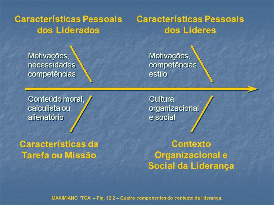 Características Pessoais dos Liderados Características Pessoais dos Líderes Características da Tarefa ou Missão Contexto Organizacional e Social da Li