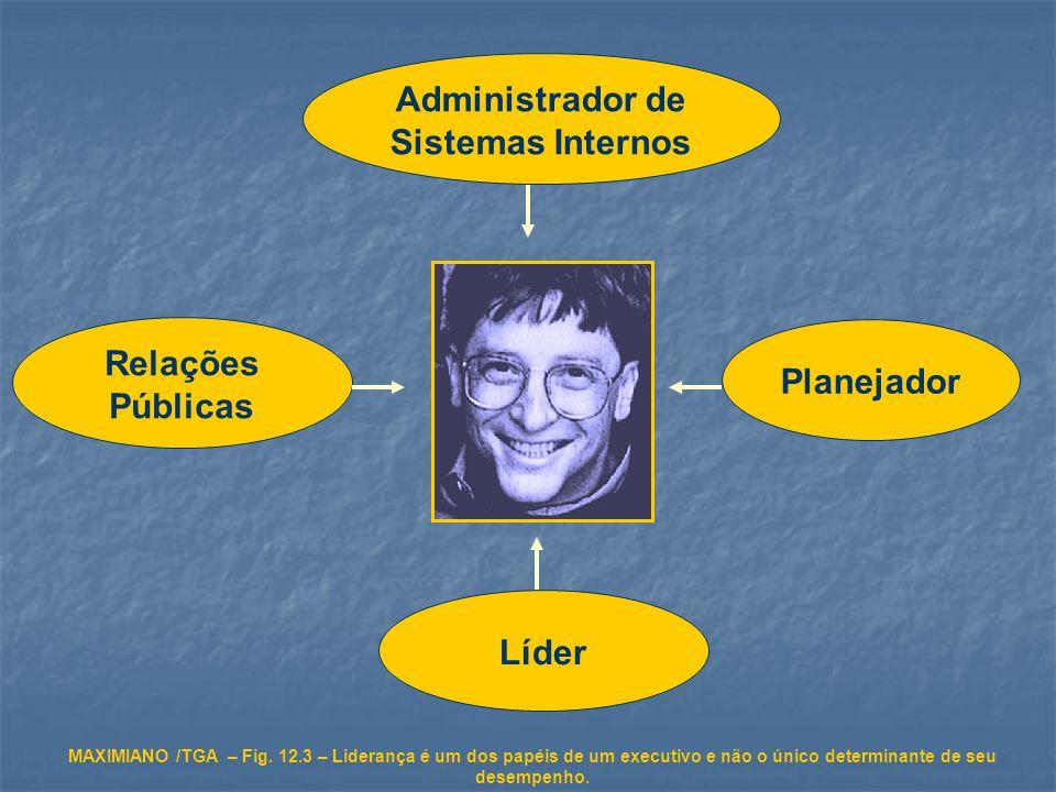Administrador de Sistemas Internos Relações Públicas Planejador Líder MAXIMIANO /TGA – Fig.