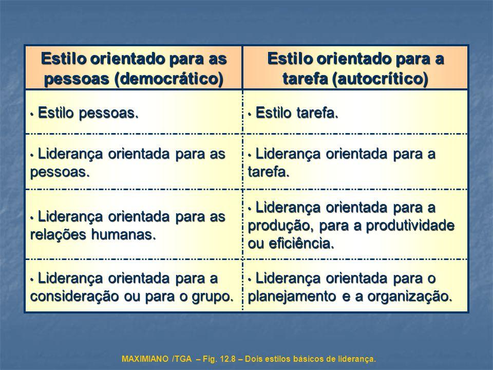 Liderança orientada para o planejamento e a organização. Liderança orientada para o planejamento e a organização. Liderança orientada para a considera