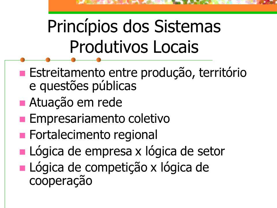 Princípios dos Sistemas Produtivos Locais Estreitamento entre produção, território e questões públicas Atuação em rede Empresariamento coletivo Fortalecimento regional Lógica de empresa x lógica de setor Lógica de competição x lógica de cooperação