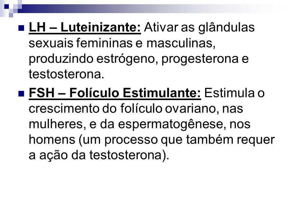 LH – Luteinizante: Ativar as glândulas sexuais femininas e masculinas, produzindo estrógeno, progesterona e testosterona. FSH – Folículo Estimulante: