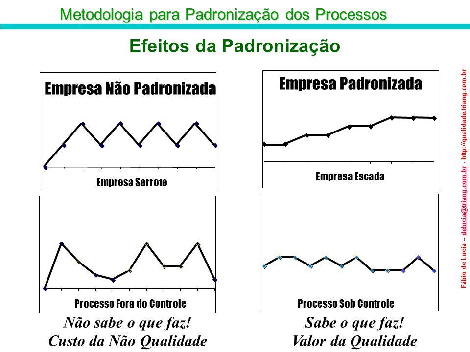 Metodologia para Padronização dos Processos Fábio de Lucia – delucia@triang.com.br - http://qualidade.triang.com.brdelucia@triang.com.br Processo Fora