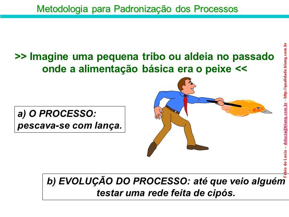 Metodologia para Padronização dos Processos Fábio de Lucia – delucia@triang.com.br - http://qualidade.triang.com.brdelucia@triang.com.br A Evolução do Processo c) O RESULTADO: pegou uma quantidade maior de peixes, com menor trabalho.