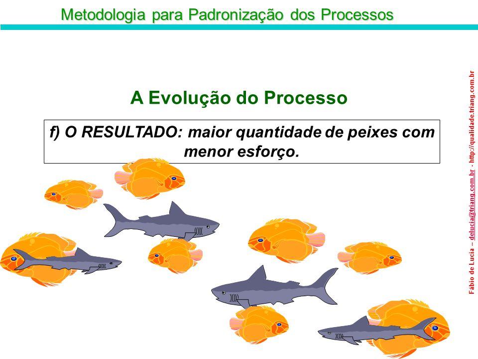 Metodologia para Padronização dos Processos Fábio de Lucia – delucia@triang.com.br - http://qualidade.triang.com.brdelucia@triang.com.br g) A PADRONIZAÇÃO: imediatamente confeccionam redes de juta e passam a utilizar como método de pesca.
