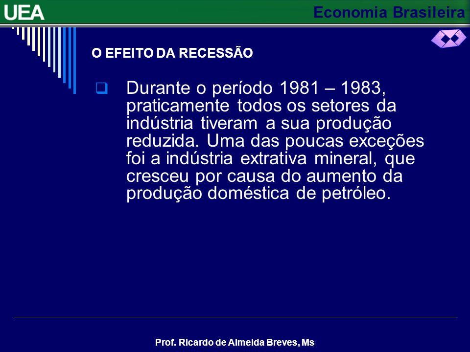 Economia Brasileira Prof. Ricardo de Almeida Breves, Ms O EFEITO DA RECESSÃO Durante o período 1981 – 1983, praticamente todos os setores da indústria