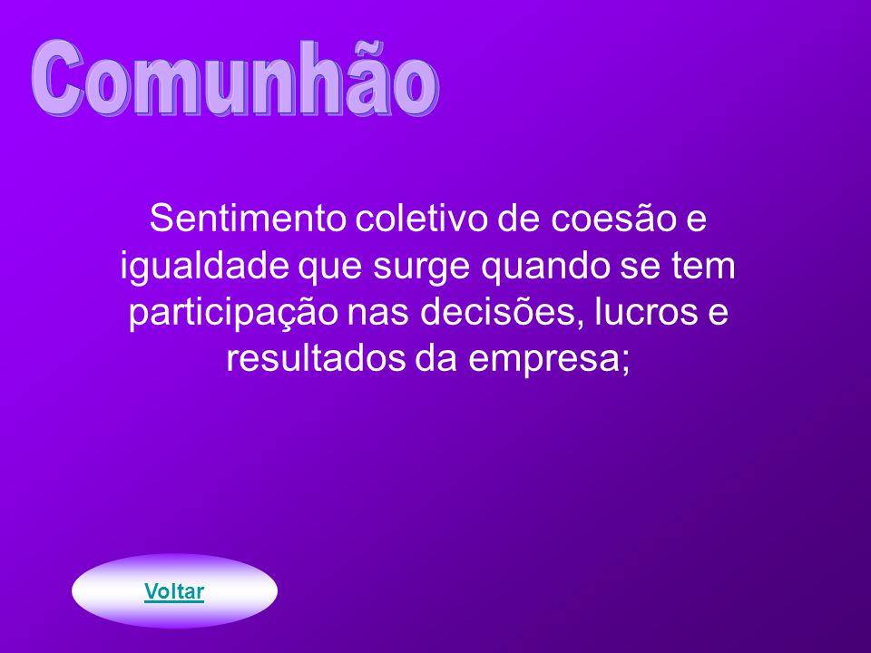 Sentimento coletivo de coesão e igualdade que surge quando se tem participação nas decisões, lucros e resultados da empresa;