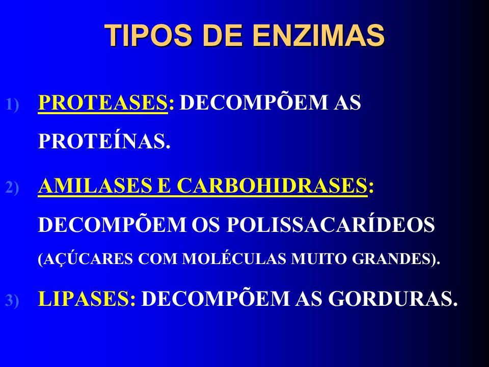 TIPOS DE ENZIMAS 1) PROTEASES: DECOMPÕEM AS PROTEÍNAS. 2) AMILASES E CARBOHIDRASES: DECOMPÕEM OS POLISSACARÍDEOS (AÇÚCARES COM MOLÉCULAS MUITO GRANDES