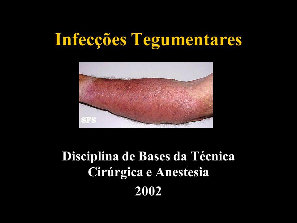 Infecções Tegumentares Disciplina de Bases da Técnica Cirúrgica e Anestesia 2002