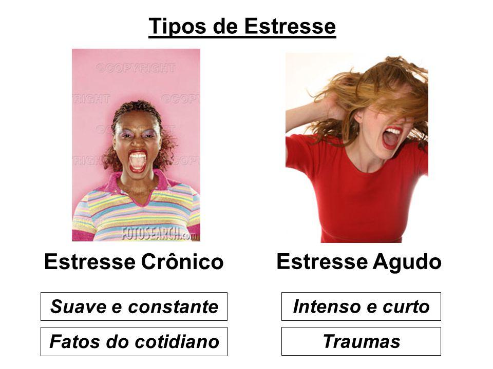 Tipos de Estresse Estresse Crônico Estresse Agudo Intenso e curto Traumas Suave e constante Fatos do cotidiano