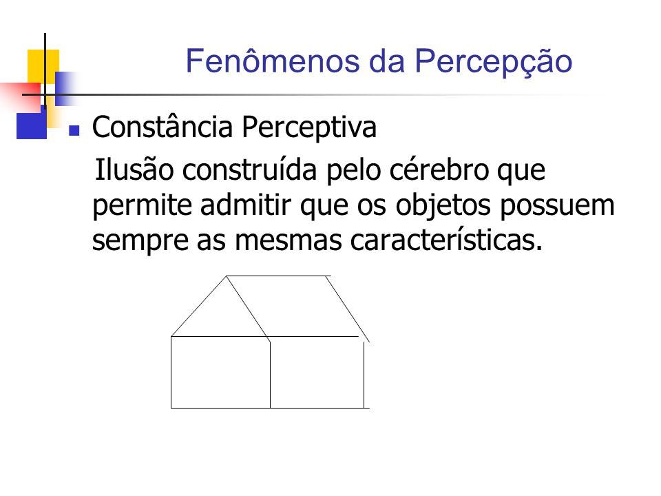 Fenômenos da Percepção Constância Perceptiva Ilusão construída pelo cérebro que permite admitir que os objetos possuem sempre as mesmas características.