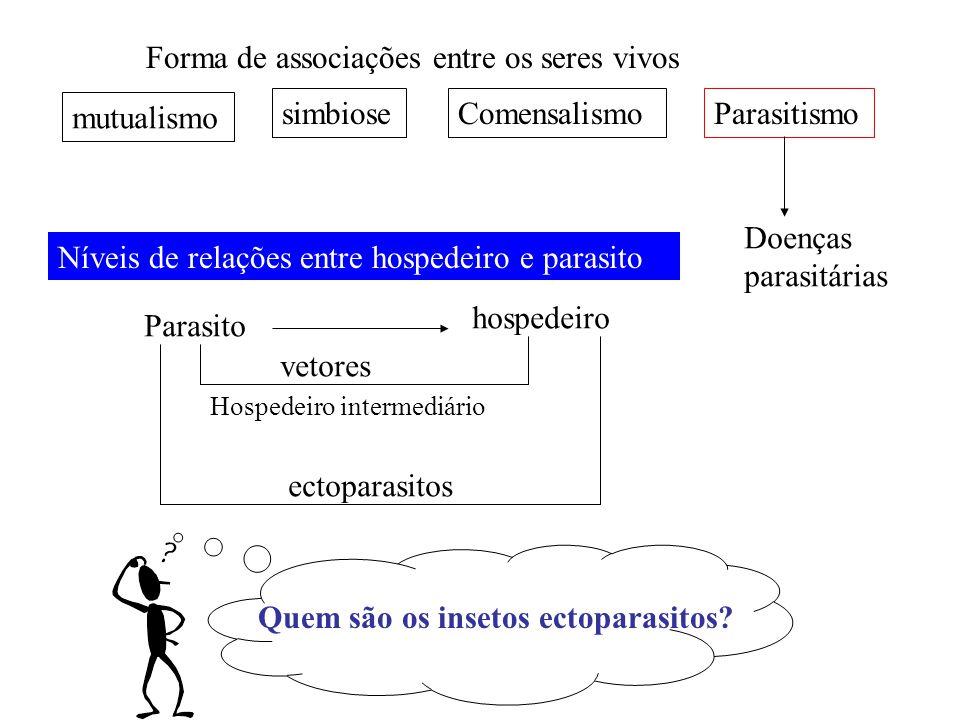 Forma de associações entre os seres vivos mutualismo simbioseComensalismoParasitismo Doenças parasitárias Parasito hospedeiro vetores ectoparasitos Ní