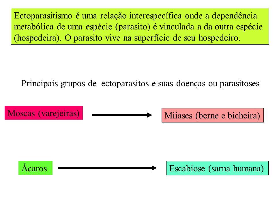 Ectoparasitismo é uma relação interespecífica onde a dependência metabólica de uma espécie (parasito) é vinculada a da outra espécie (hospedeira). O p
