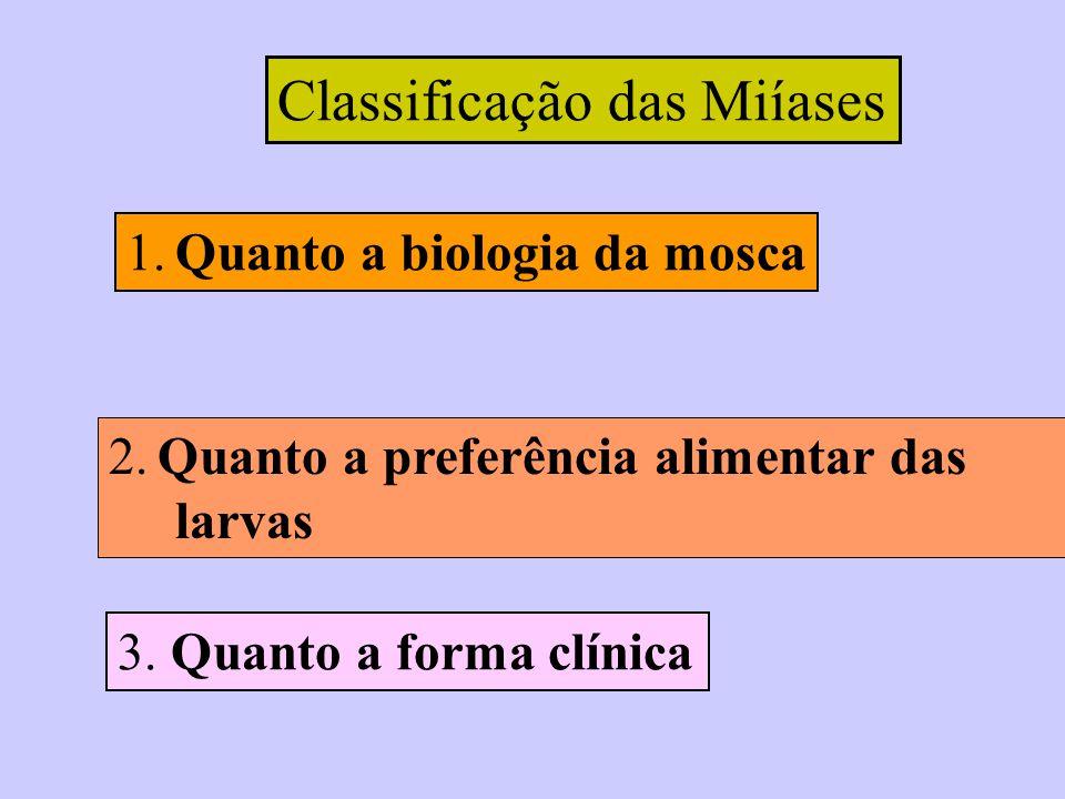 Classificação das Miíases 1. Quanto a biologia da mosca 2. Quanto a preferência alimentar das larvas 3. Quanto a forma clínica