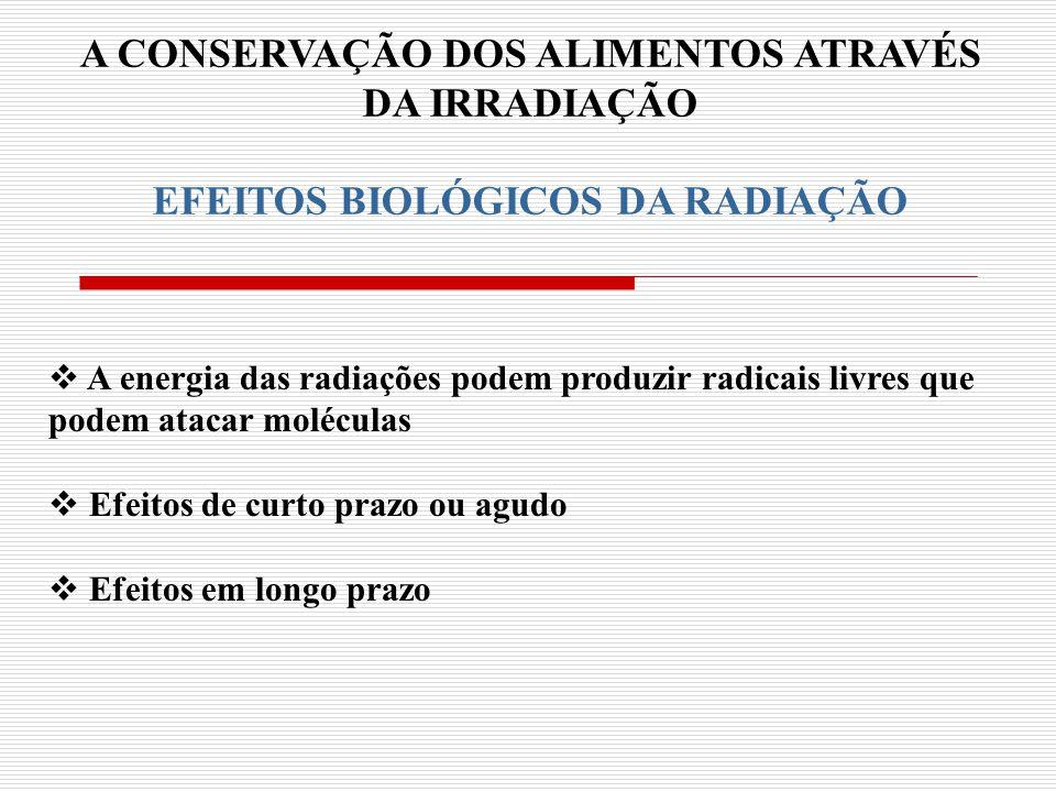 A CONSERVAÇÃO DOS ALIMENTOS ATRAVÉS DA IRRADIAÇÃO RADIAÇÃO PARA CONSERVAÇÃO DE ALIMENTOS A radiação é um excelente método para conservação Radiação proporciona aos alimentos: - Estabilidade nutritiva - Condições de sanidade - Longo período de armazenamento