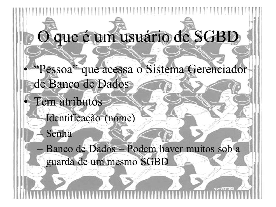 O que é um usuário de SGBD Pessoa que acessa o Sistema Gerenciador de Banco de Dados Tem atributos –Identificação (nome) –Senha –Banco de Dados – Pode